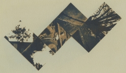 Neal Cox; Between Art and Housing, 2013; Gum bichromate over cyanotype; 280mmx210mm; Edition 3/3