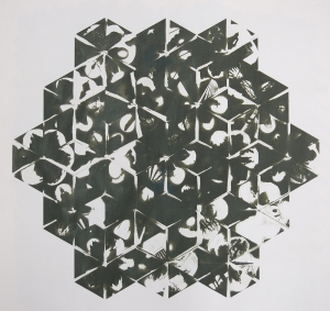 Neal Cox; Deachedron Grid, 2015; Gum bichromate over cyanotype; 565mmx475mm; Edition 3/3 E.V.