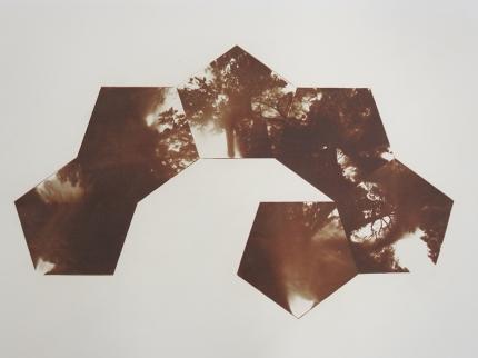 Neal Cox; Untitled Dodeca Half, 2013; Gum bichromate; 505mmx390mm; AP