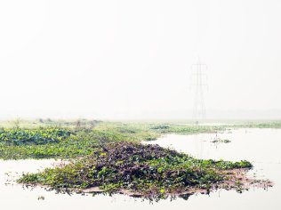 Caleb Cain Marcus; Plants, steel, water, birds and space, 2013; inkjet pigment; 559x746mm