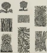 Mort Baranoff; Untitled (plants), nd; woodcuts; 258x232mm