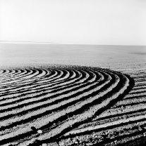 Kristin Capp; Between Lamona and Stahl colonies, Washington, 1996; inkjet pigment print; 524x519mm