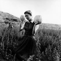 Kristin Capp; Carol with Cabbages, Lamona Colony, Washington, 1994; inkjet pigment print; 517x519mm